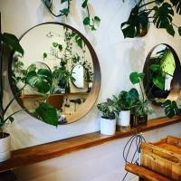 Plumage Salon